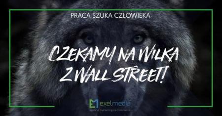 wall-street-wilk